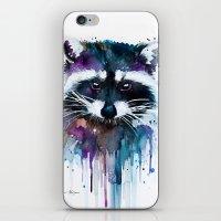 Raccoon iPhone & iPod Skin