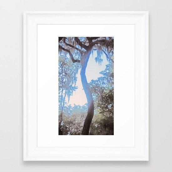 S is for Tree Framed Art Print