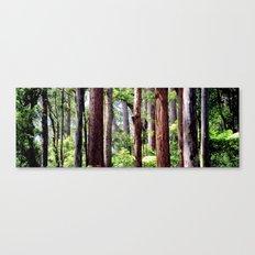 Australian Native Coastal Rainforest Canvas Print
