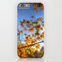 Autumn Arrival iPhone 6 Slim Case