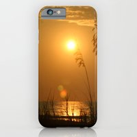 iPhone & iPod Case featuring Morning Light by Smileyface Photos