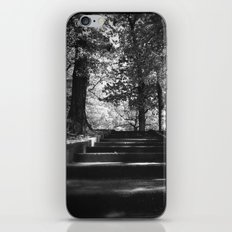 Ascending iPhone & iPod Skin