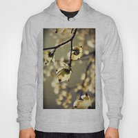 Magical Dogwood Hoody