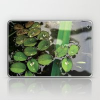 Mini Water Lilies and Water Bug Laptop & iPad Skin