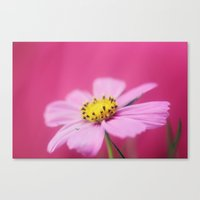 The Girly Side Canvas Print