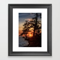 Sunset Through The Trees Framed Art Print