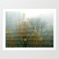 Intense Fog Art Print