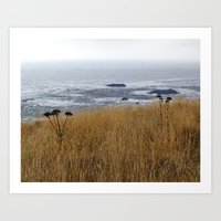 Navaro Bluffs, fall flowers over the ocean Art Print