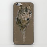 Wolf Head iPhone & iPod Skin