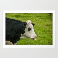 Cheeky Cow Art Print