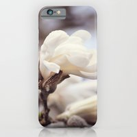 iPhone & iPod Case featuring Magnolia Flower by Dena Brender Photography