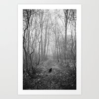 Black Cat Alone In The F… Art Print