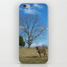 EEEEoonk. iPhone & iPod Skin