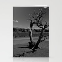 Desert Shadows Stationery Cards