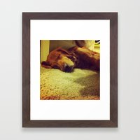 Sleepyhead Framed Art Print