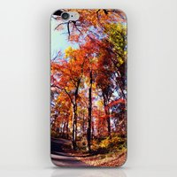 Fisheye Fall II  iPhone & iPod Skin