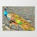 Peacock at the Fresno Zoo Canvas Print