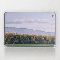Scenic Spring Laptop & iPad Skin