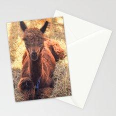Llama Tude Stationery Cards