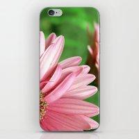 Pinky Li iPhone & iPod Skin