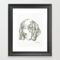 Blueberry the Beagle Framed Art Print