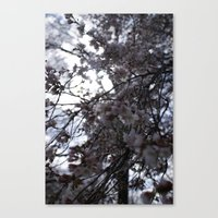 Canvas Print featuring Flower by Elise Tyv