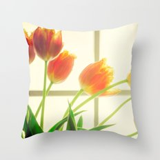 Effluence Throw Pillow
