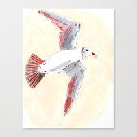 Flying bird Canvas Print