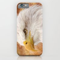 iPhone Cases featuring Bald Eagle Portrait by Lena Photo Art