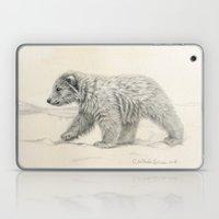 Polar Bear's Cub Laptop & iPad Skin