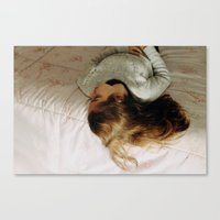 Daydreams Canvas Print
