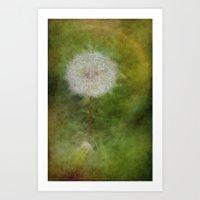 Dandelion Fuzz Art Print