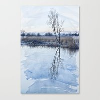 River Ant Canvas Print