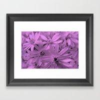 Pink Daisies Framed Art Print
