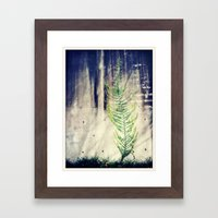 Climbing Walls Framed Art Print