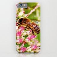 Art of Nature iPhone 6 Slim Case