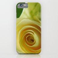 Yellow Roses #12 iPhone 6 Slim Case
