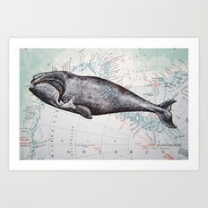 Whale in Antarctica Art Print