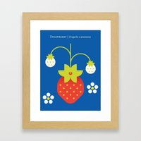 Fruit: Strawberry Framed Art Print