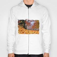 magical autumn pano Hoody