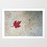 Red Leaf on Concrete Art Print