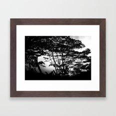 Hilo Misty Morning Framed Art Print