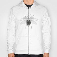 entomology 03. (ii) Hoody