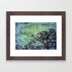Early Summer Framed Art Print
