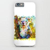 iPhone & iPod Case featuring Koala  by ururuty