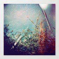Holga Flowers III Canvas Print
