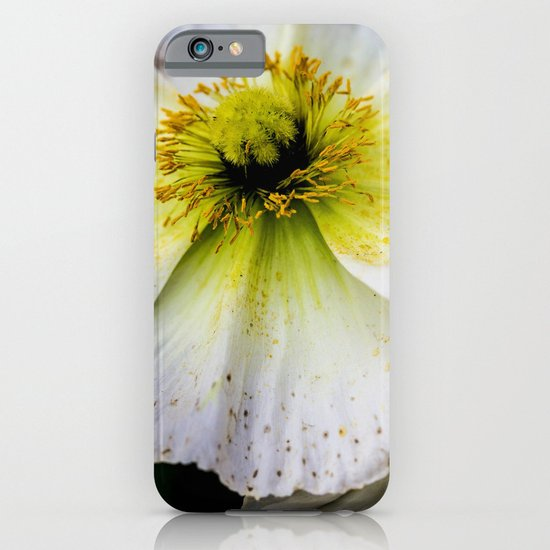 Flawed iPhone & iPod Case