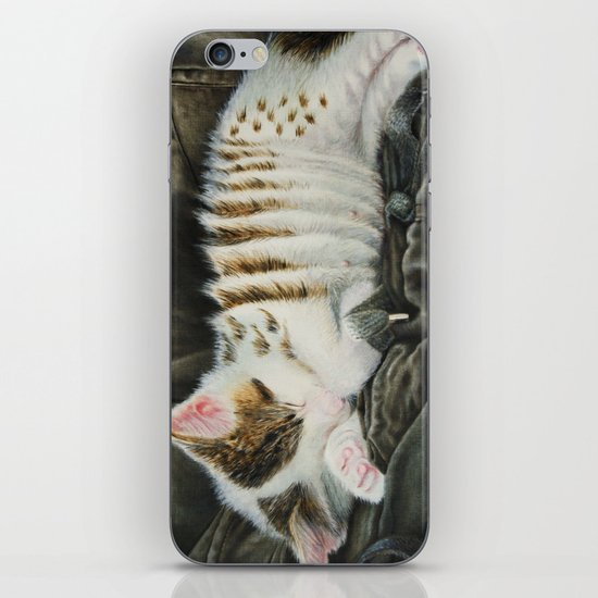 Sleeping Accordion iPhone & iPod Skin