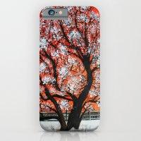 Snowy old tree iPhone 6 Slim Case
