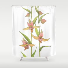 Stream Orchid - Epipactis gigantea Shower Curtain